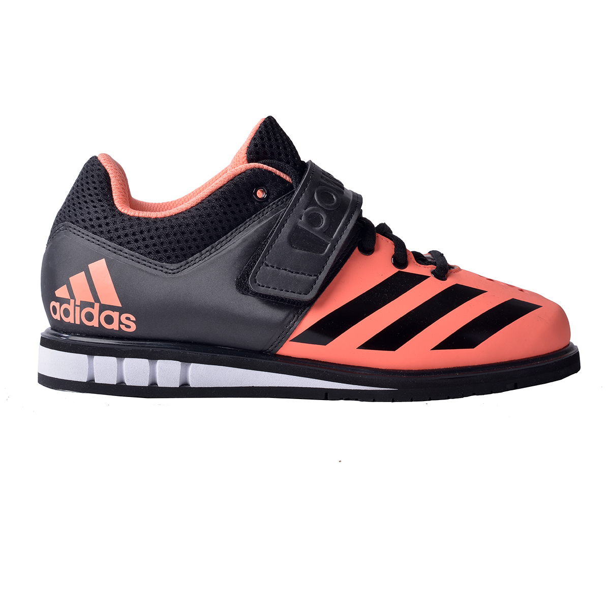 Adidas bodybuilding shoes : What to see in seattle wa
