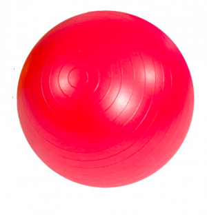 Gym Ball - 55cm