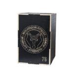 Wolverson Plyo Box